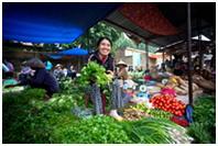 Vietnam Microinsurance
